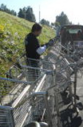 shopping cart repair